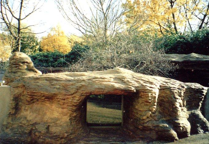 Meercat Den London Zoo